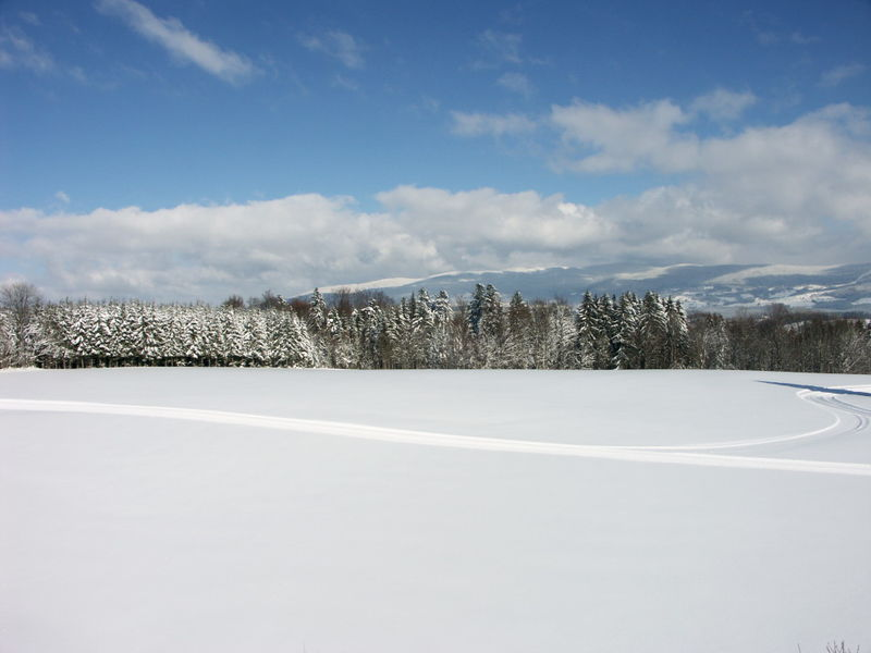 Wintererlebnis in den Langlauf-Loipen bei Breitenberg mit herrlicher Aussicht