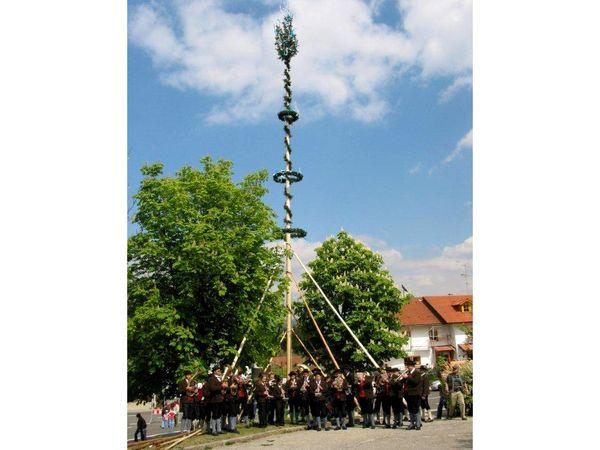 Maibaumaufstellen mit Blasmusik in Breitenberg im Passauer Land