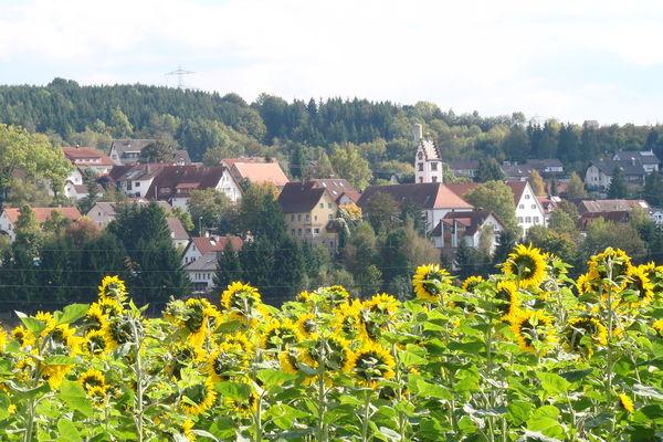 Blick auf den Ortsteil Kirchdorf