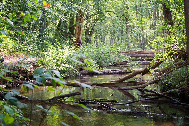 Naturparkroute Märkische Schweiz - Entdeckertour