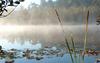 Naturparkroute, Gartzsee, Foto: Archiv LUGV