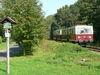 Buckower Kleinbahn, Foto: Wolfram Neufeldt