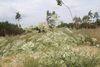 Auf dem Rundweg, Foto: Seenland Oder-Spree