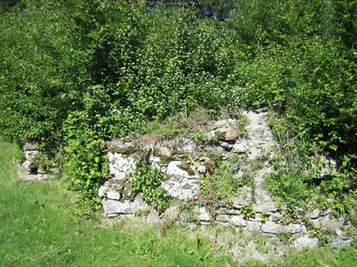 Bewachsene Burgmauer