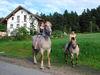 Pferdeausritt beim Balsnhof Sponfeldner in Chamerau im Naturpark Oberer Bayerischer Wald