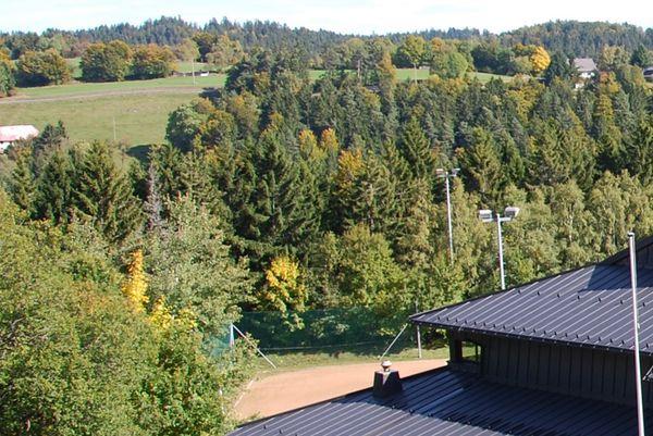 Sportplatz Wittenschwand