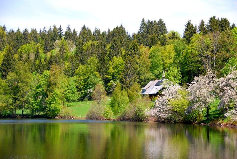 Klosterweiher in Dachsberg
