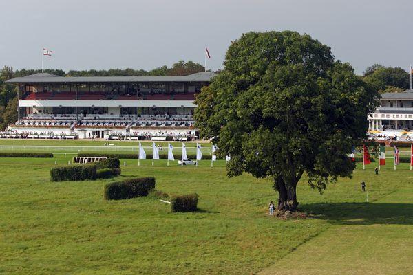 Pferderennen Hoppegarten