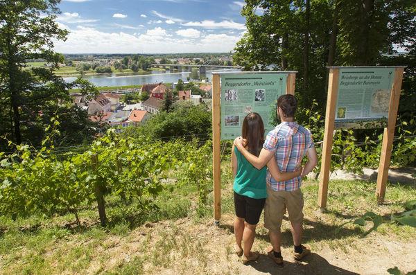 Stadtnahe Erholung im Stadtwald Geiersberg
