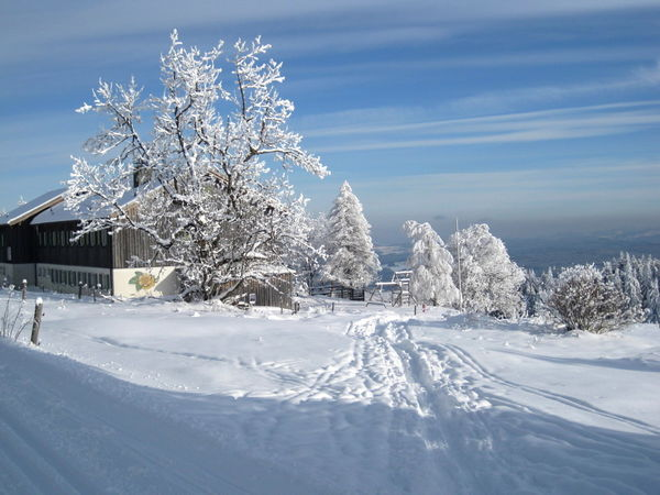 Schneeschuhwandern zum Landshuter Haus auf der Oberbreitenau im Bayerischen Wald