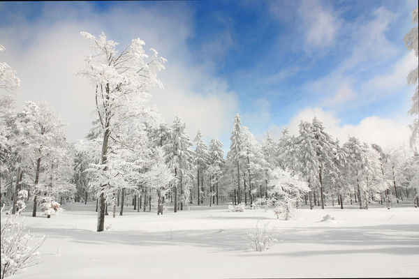 Deggendorf bietet pures Wintervergnügen für Jung und Alt