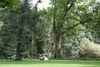 Schlosspark Diedersdorf, Foto: Tourismusverband Seenland Oder-Spree e.V./Katrin Riegel