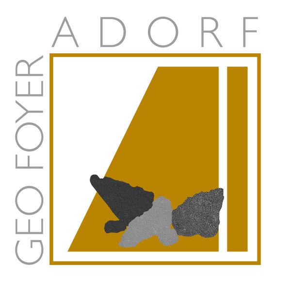 Logo des Geo Foyer