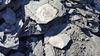 auf Fossiliensuche, ©SchieferErlebnis Dormettingen