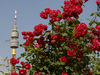 Florianturm im Westfalenpark