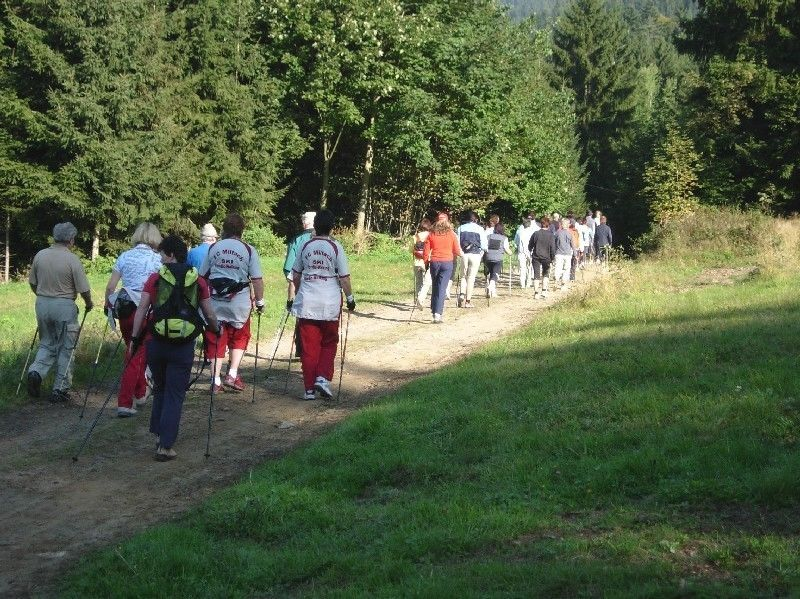 Nordic Walking bei Drachselsried im Zellertal Bayerischer Wald