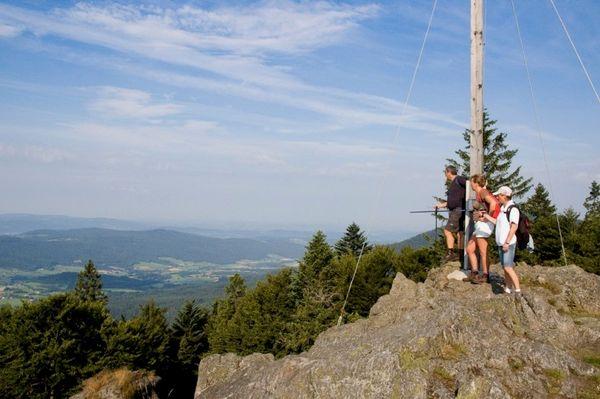Wanderer blicken vom Mühlriegel ins Zellertal im Bayerischen Wald