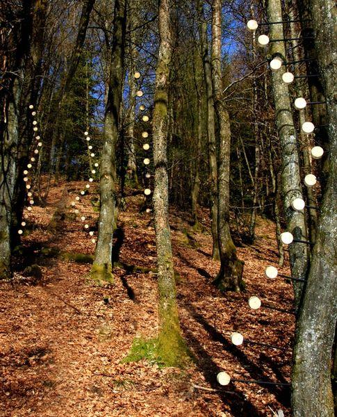 Lolli-Bäume