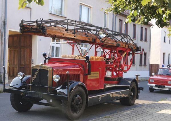 Feuerwehr- und Technikmuseum Eisenhüttenstadt, Drehleiter DL19
