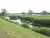 Oder-Neiße Radweg, Natur, Landschaft, Foto Sandra Ziesig (2)