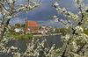 Eisenhüttenstadt (Fürstenberg), Flusslandschaft Oder, Foto Johann Müller (1)
