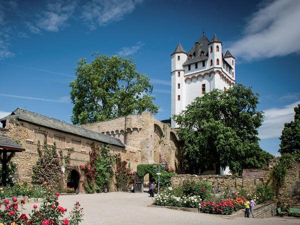 Kurfürstliche Burg Eltville Südansicht