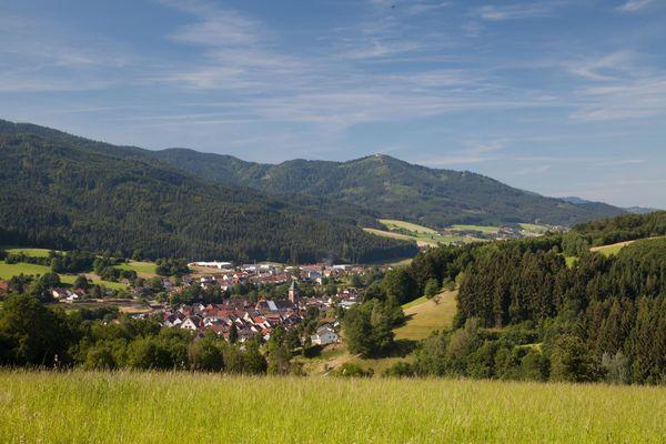 urlaub im schwarzwald schwarzwald tourismus gmbh  Neue Redwood H Blau Freizeithemd Herren Verkauf P 1030 #14
