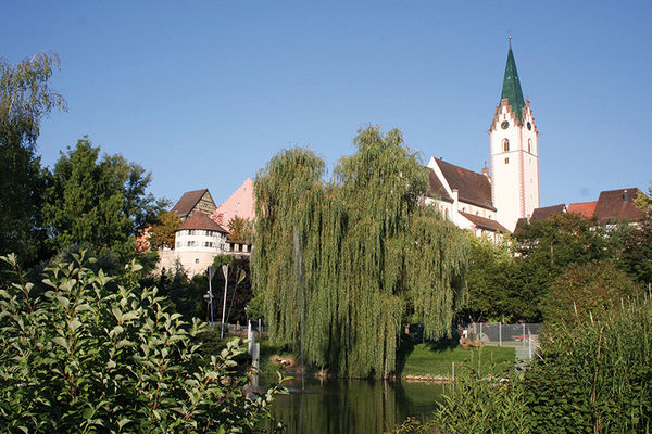 Blick vom Stadtgarten auf die Altstadt