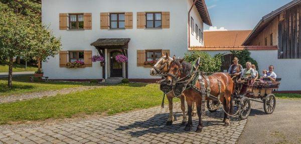 Der Bayerwald Ferienhof Schmid bei Eppenschlag