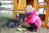 Bauernhofurlaub am Nationalpark Bayerischer Wald