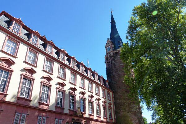 Schloss Erbach Nibelungen Land