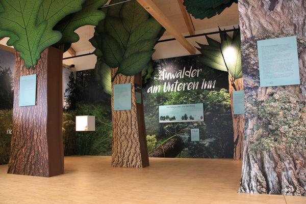 Ausstellung im Naturium in Ering