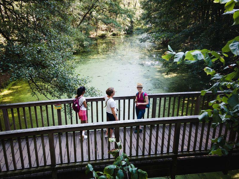 Mit dem Waldwichtel an der Löcknitz unterwegs - Spätaufsteher-Tour