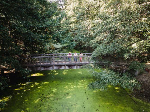 Brücke Wupatz Lehrpfad, Foto: Seenland Oder-Spree/Christoph Creuzburg