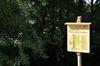 Naturdenkmal Kastanienallee