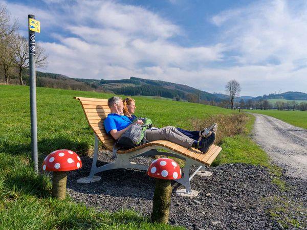 Familienliege mit Fliegenpilzen bei Nichtinghausen