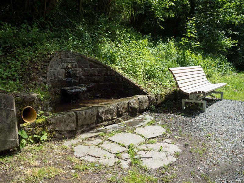 Quelle am Wennepfad in Wenholthausen
