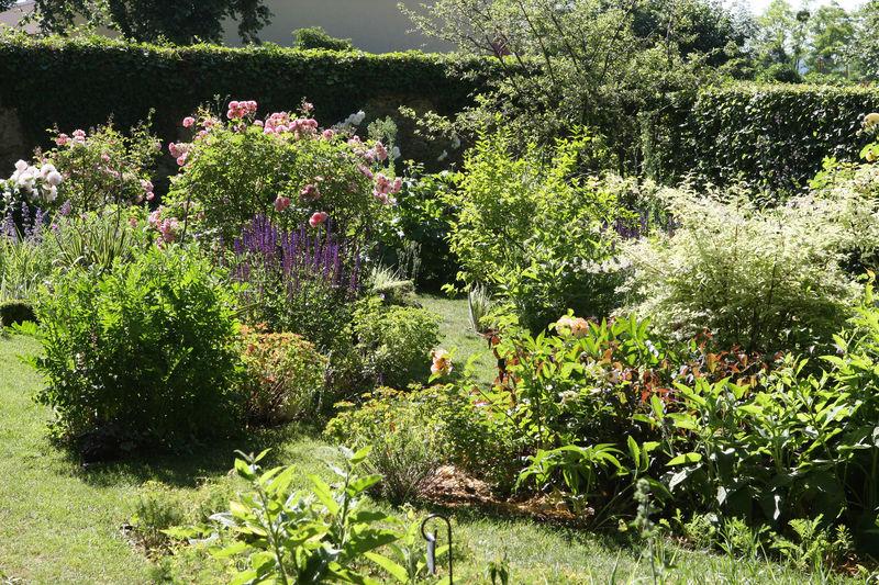 Garten der heimischen pflanzen g rten ohne grenzen - Front de liberation des nains de jardin ...