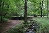 Cöthener Park, Foto: Lothar Grewe
