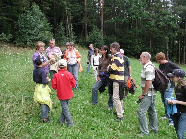 Pflanzenkunde bei einer Kräuterführung im Falkensteiner Vorwald