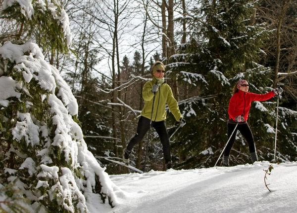 Langläufer auf der Radweg-Loipe im Langlaufgebiet Vorderer Bayerischer Wald