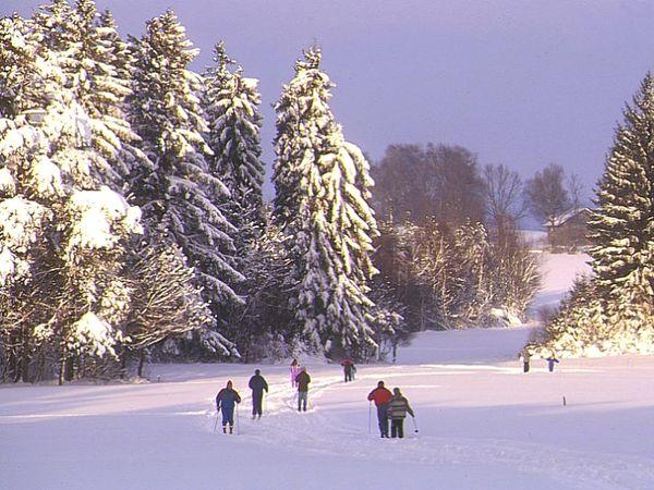 Wintererlebnis beim Skiwandern zwischen Falkenstein und Wiesenfelden