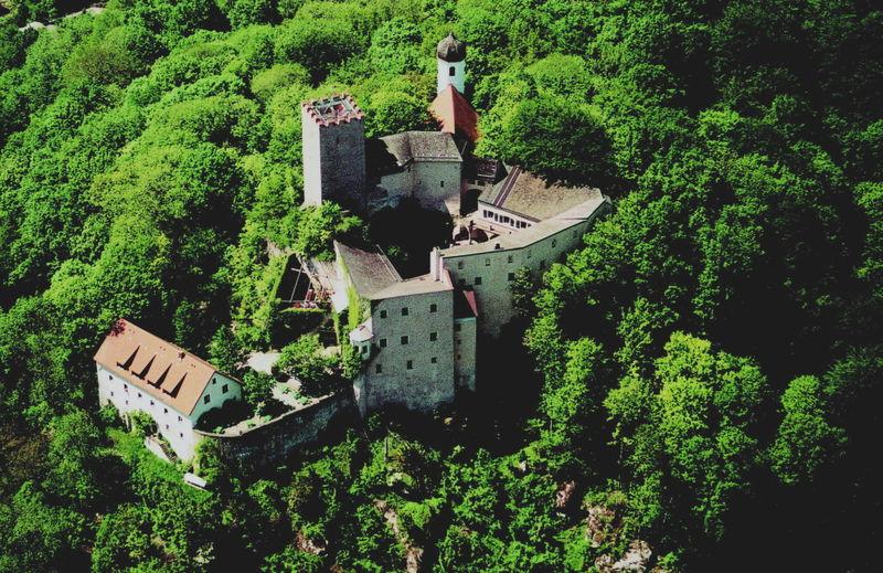 Blick auf Burg Falkenstein im Naturpark Oberer Bayerischer Wald