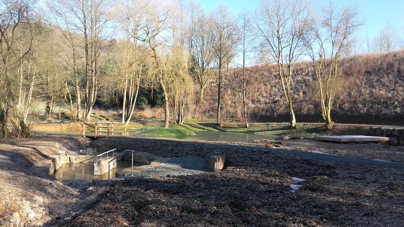 Ruhrmanns Teich