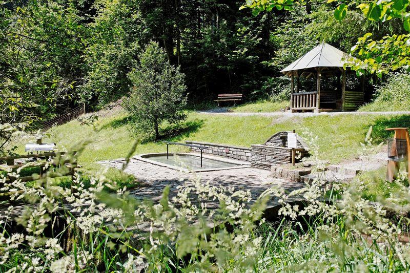 Die Walderholungsanlage mit Grillstelle, Pavillion Historische Mühle, Hütte und die bekannte Wassertretstelle
