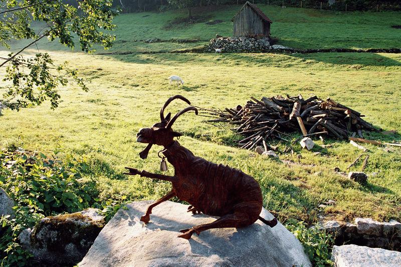 Kunstobjekt Ziege im Sasbachtal bei Forbach