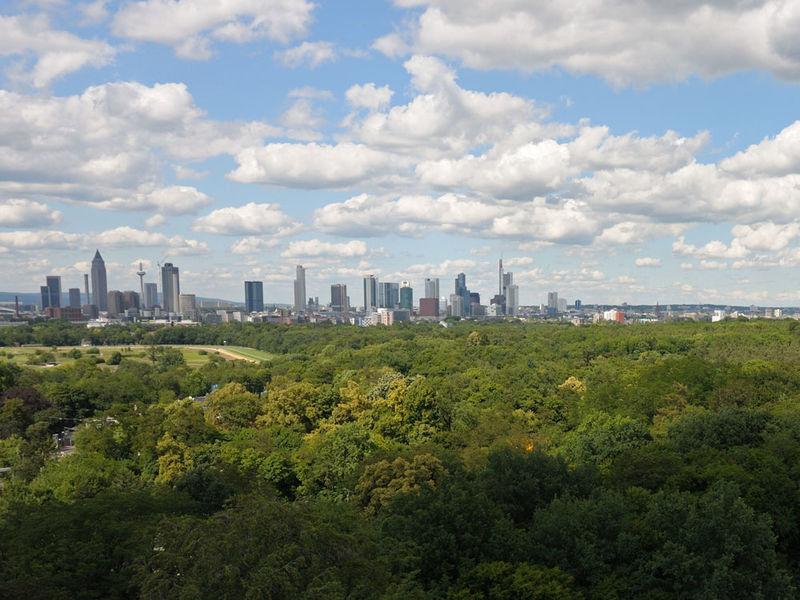 Stadtwald Frankfurt