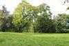 Lienaupark in Frankfurt (Oder), Foto: Tourismusverband Seenland Oder-Spree e. V.