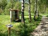 Info- und Quiztafeln am Erlebnisweg Falke, der durch eine herrliche Birkenallee führt