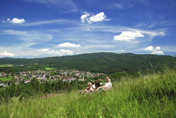 Frauenau - das gläserne Herz des Bayerischen Waldes